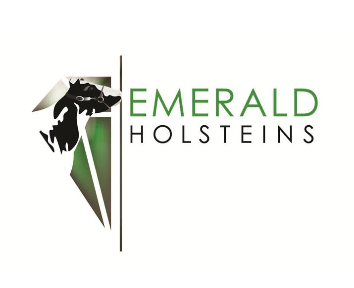 Emerald Holsteins